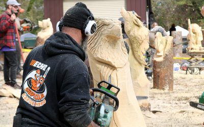 Chaptacular 2017 – Chainsaw Carving Event