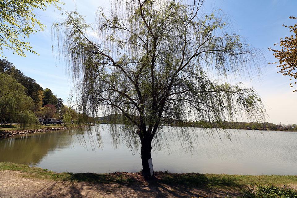 River Country RV Campground Gallery – Gadsden AL