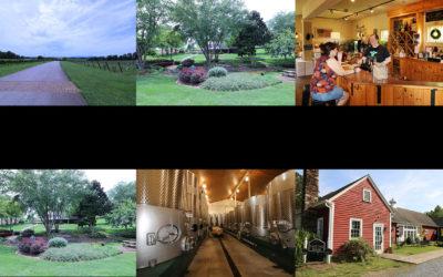 North Carolina Wineries – Yadkin County NC